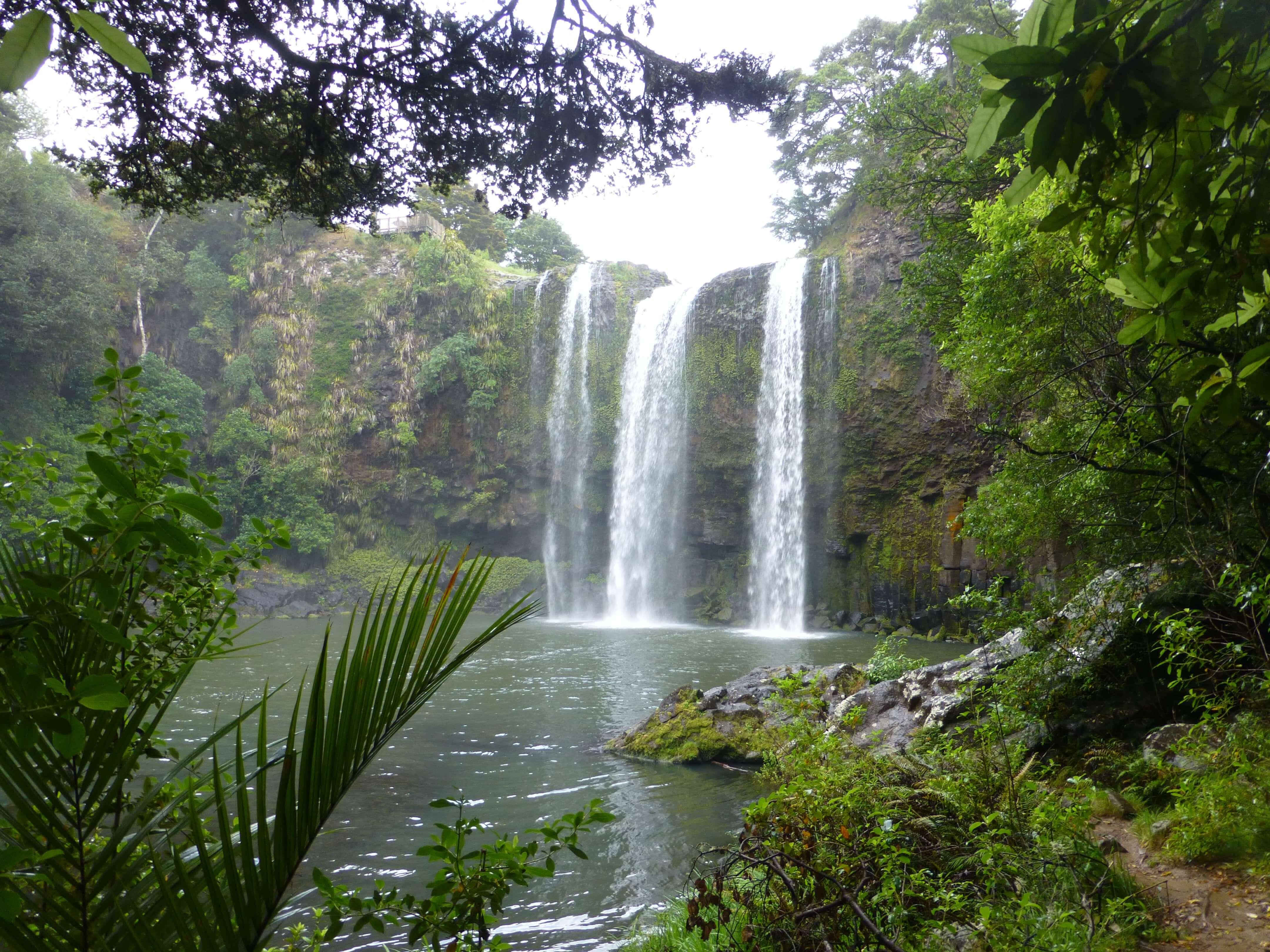 Weit weg Reisen, Whangarei Falls, Neuseeland 5