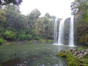 bei den Whangarei Falls, Neuseeland, Weit weg Reisen 6