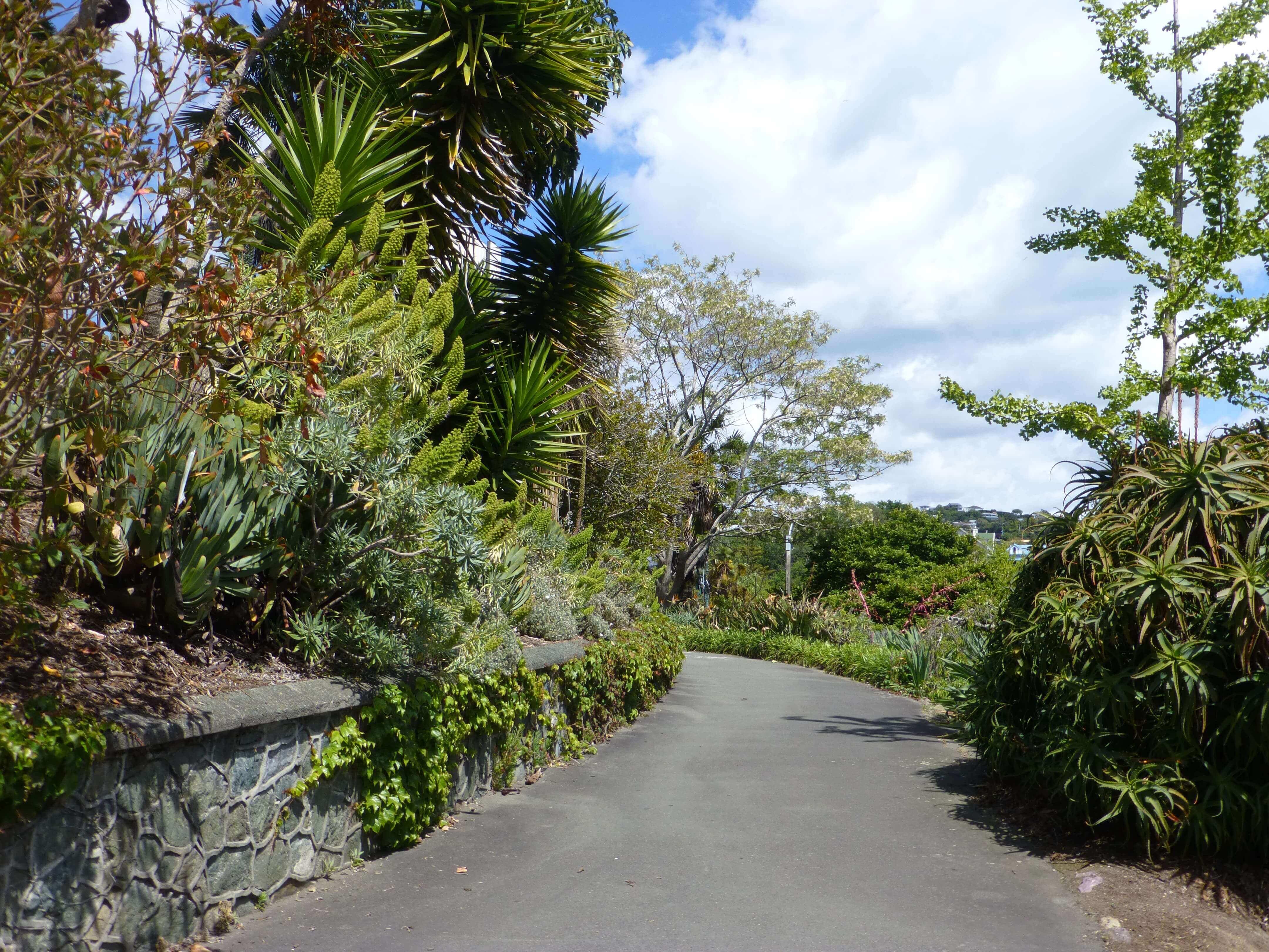 Weit weg reisen, Nelson Neuseeland 8
