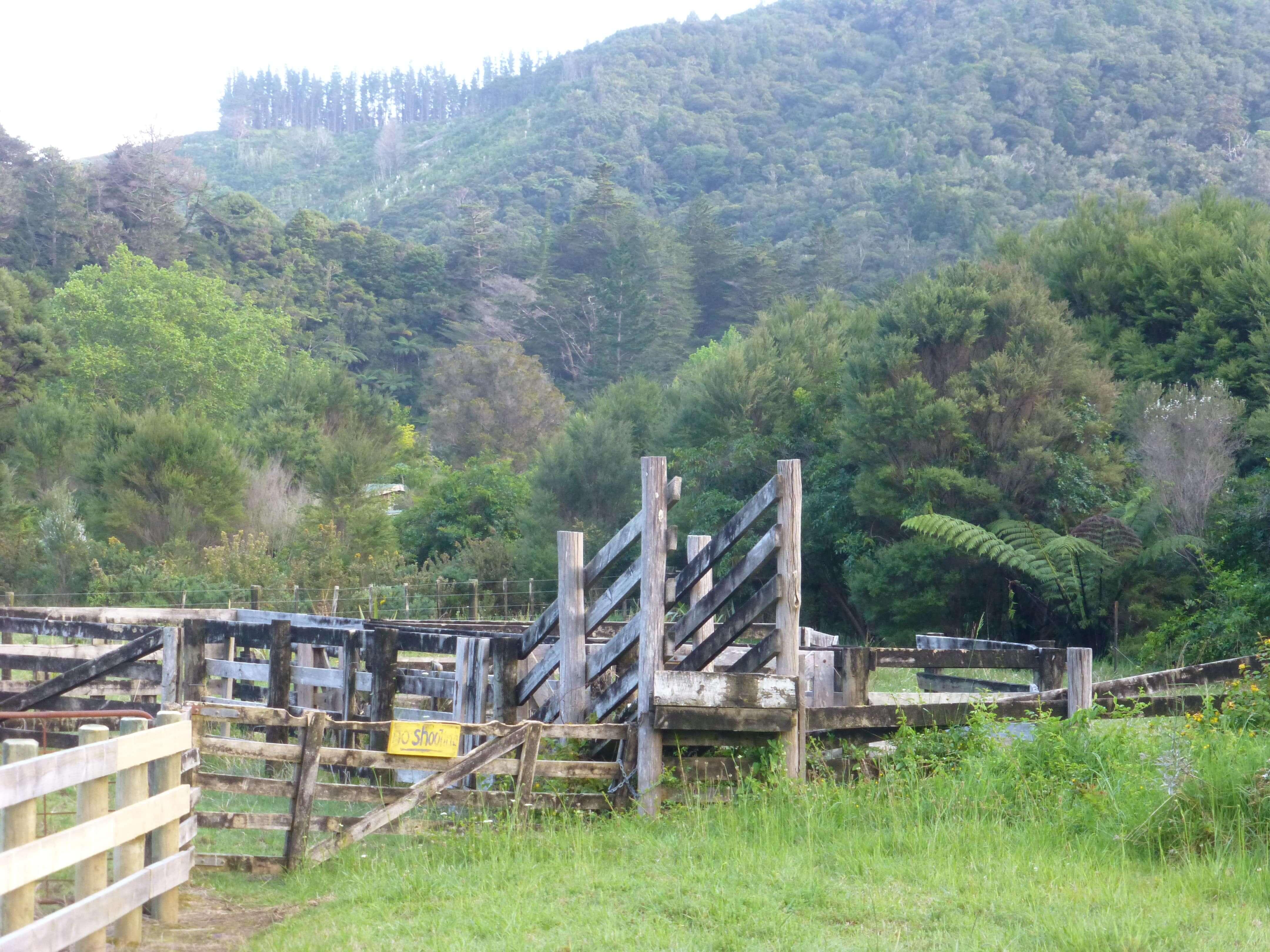 Weit weg reisen, Campingplatz Raetea North Side 7