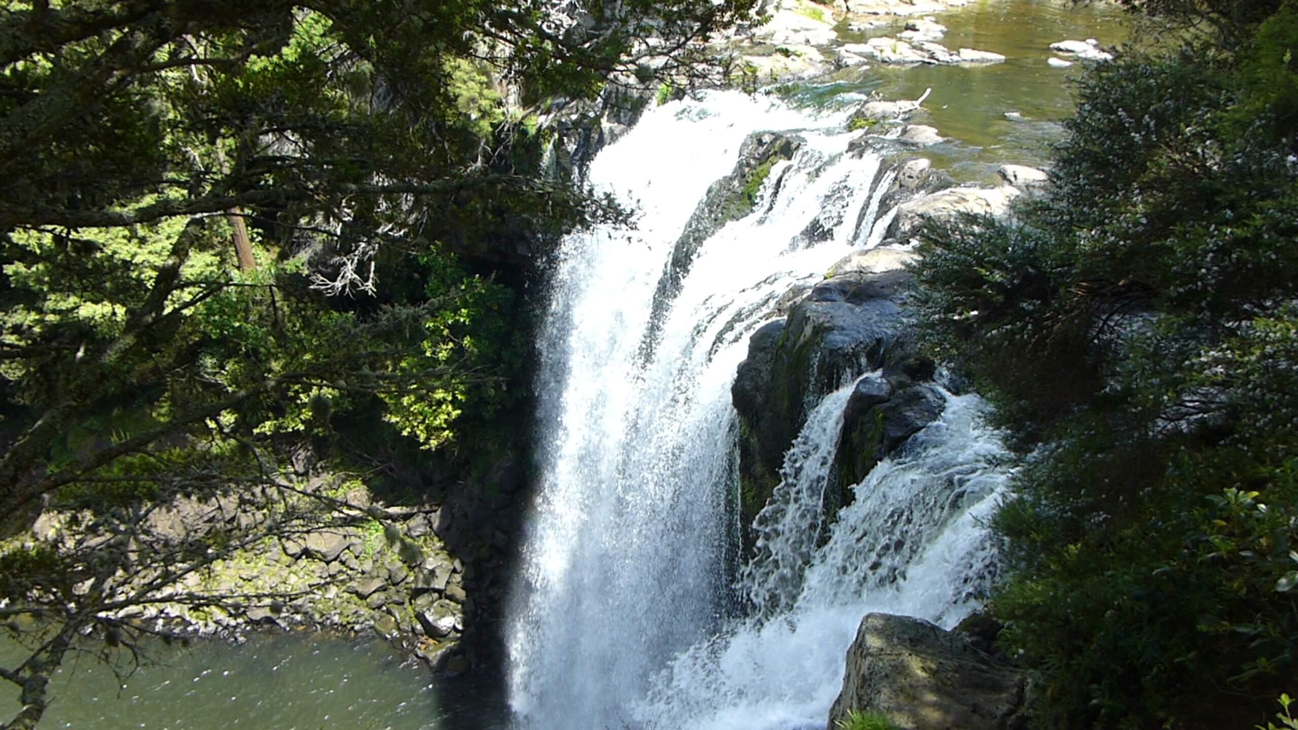 Weit weg Reisen, Rainbow Falls, bei Kerikeri 7