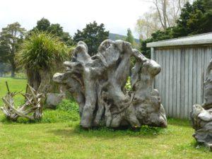 Weit weg reisen, Nelson's Kaihu Kauri 17