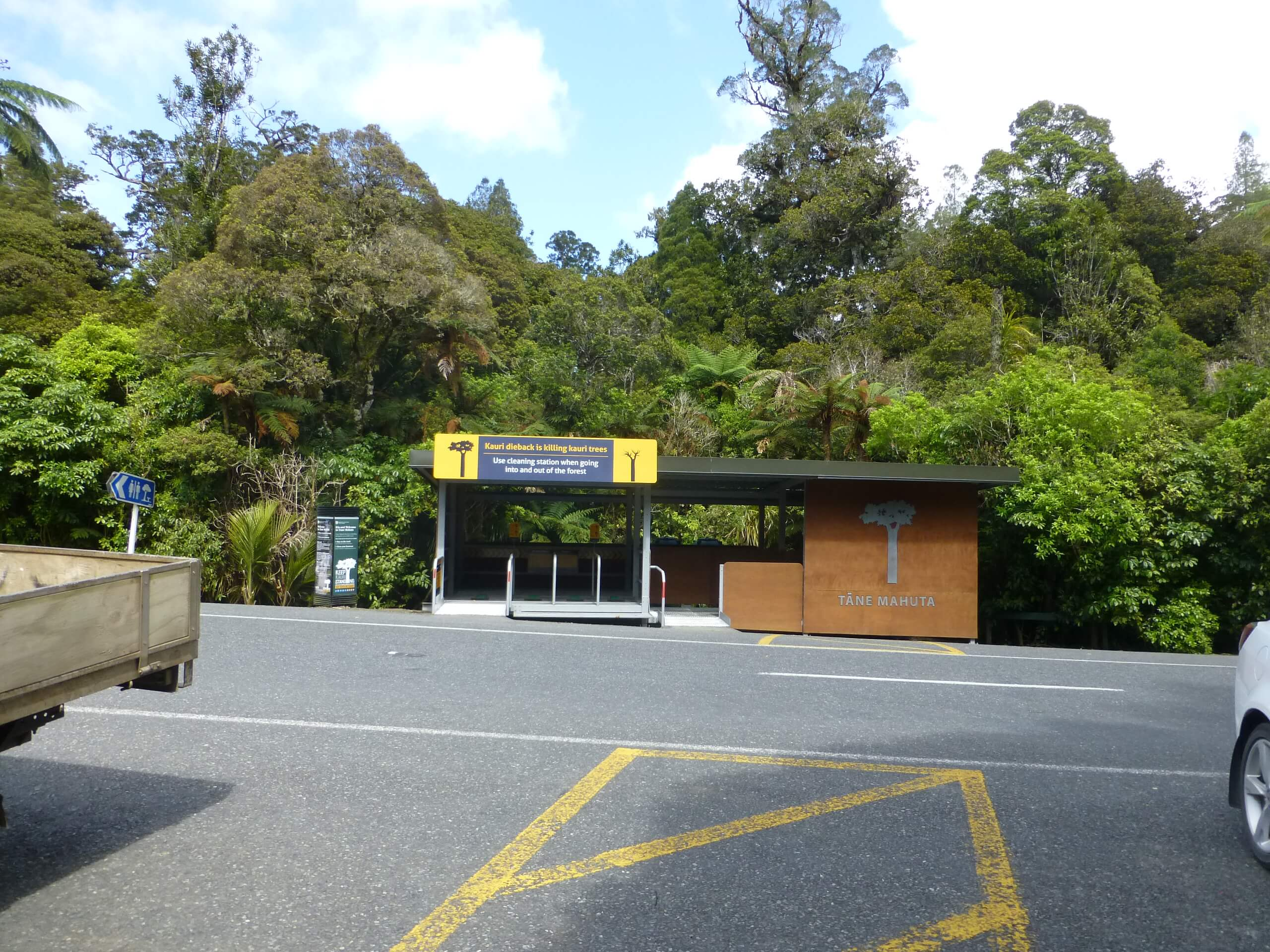 weit weg reisen, Waipoua Forest, Tane Mahuta 2