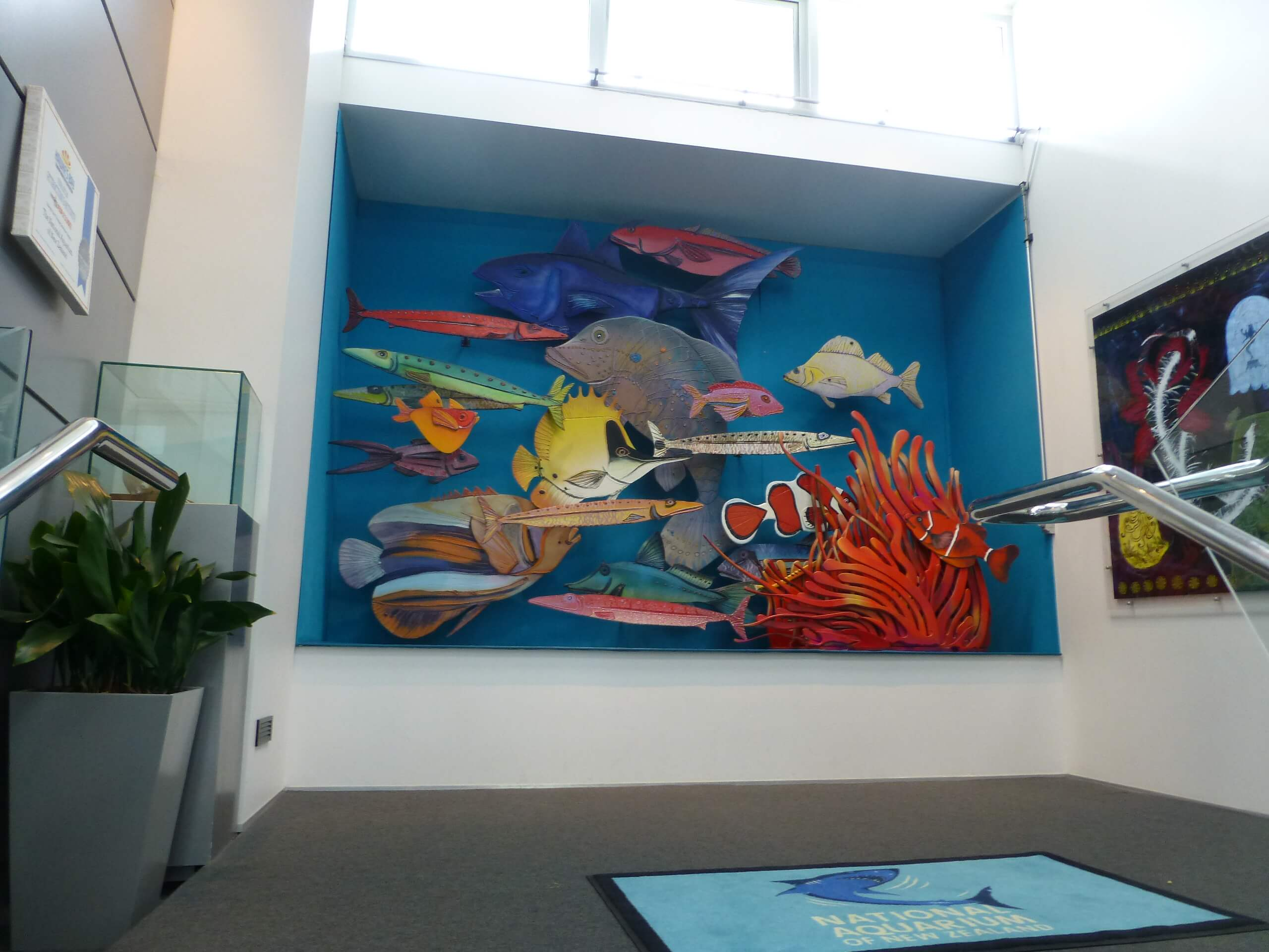 Weit weg Reisen, National Aquarium, Napier 4