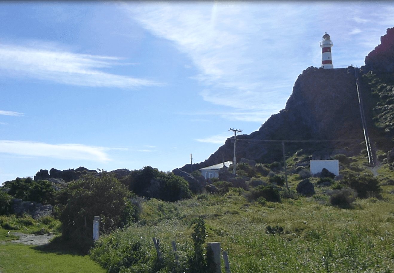 Lighthouse am Cape Palliser, Weit-weg.reisen