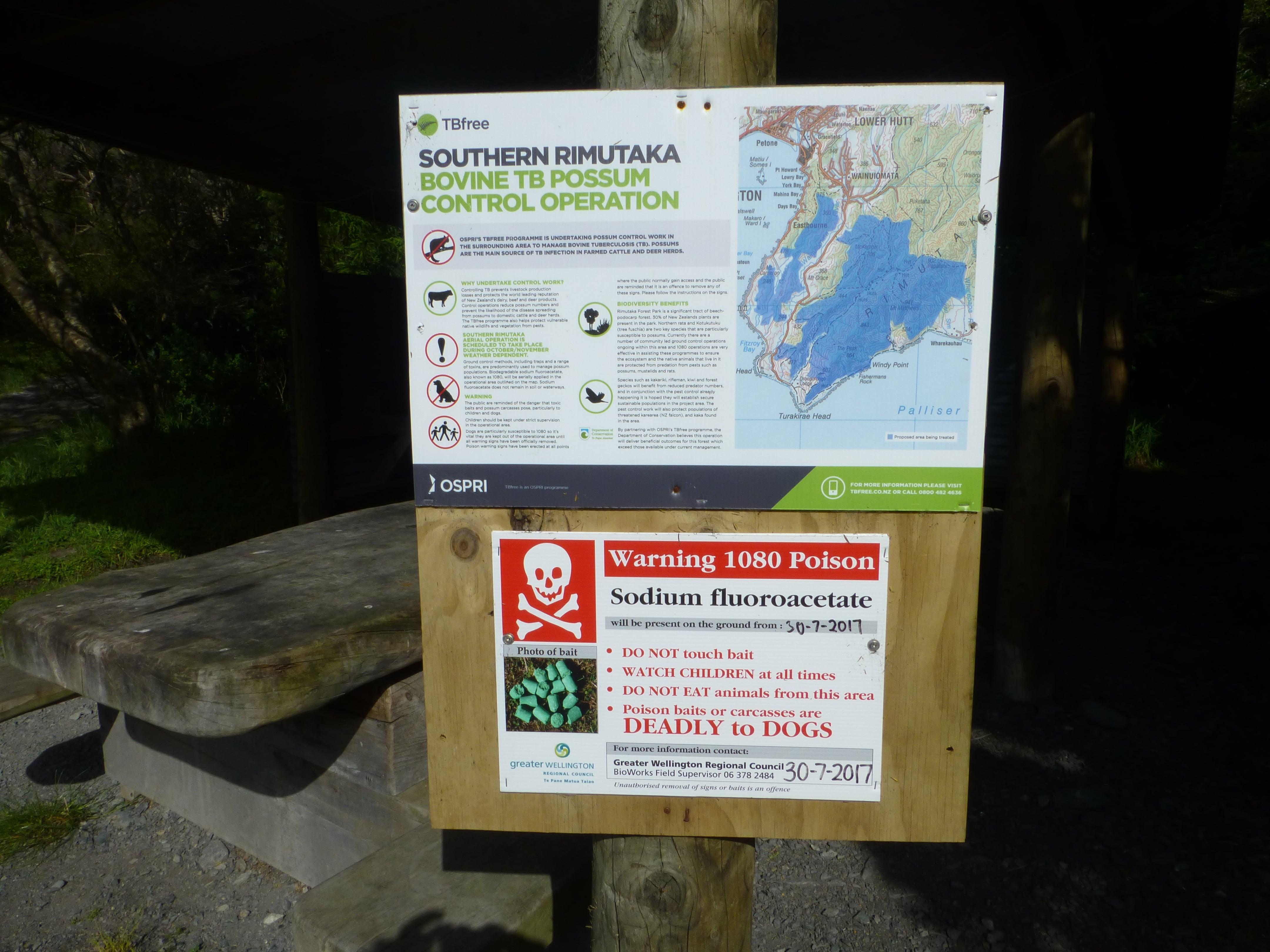 Weit-weg.reisen, Corner Creek Campsite 5