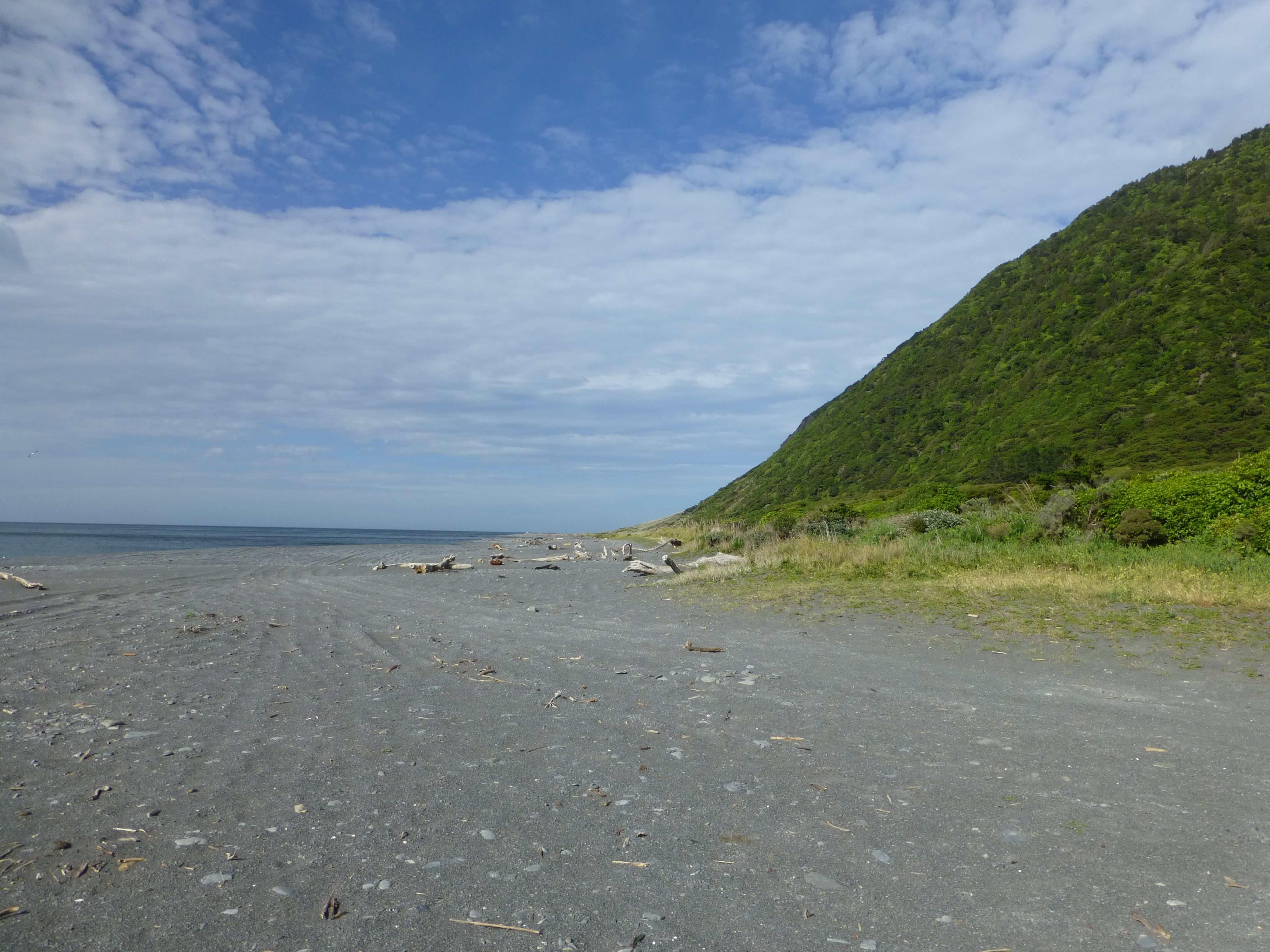 Weit-weg.reisen, Palliser Bay bei Corner Creek 10