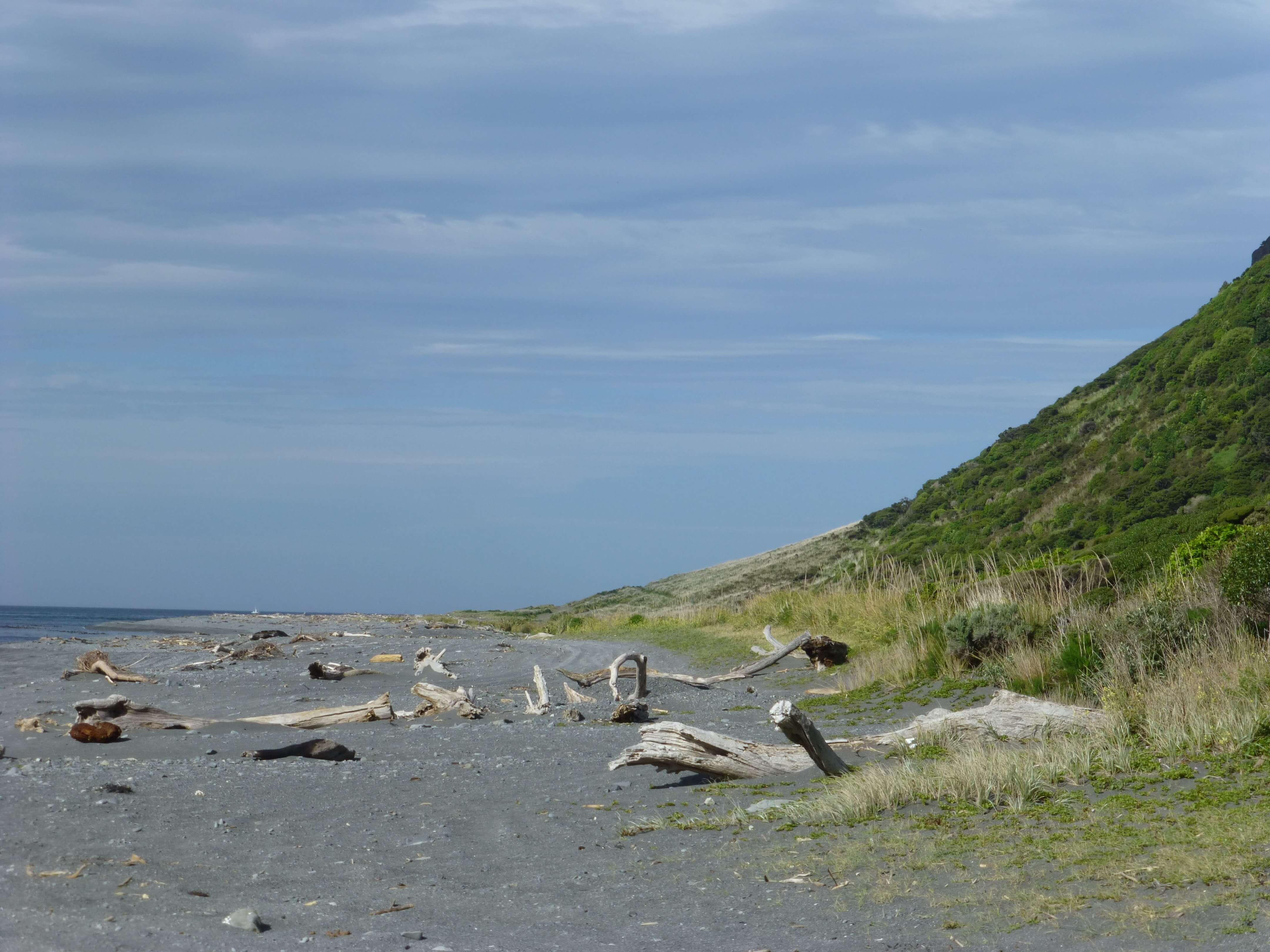 Weit-weg.reisen, Palliser Bay bei Corner Creek 13
