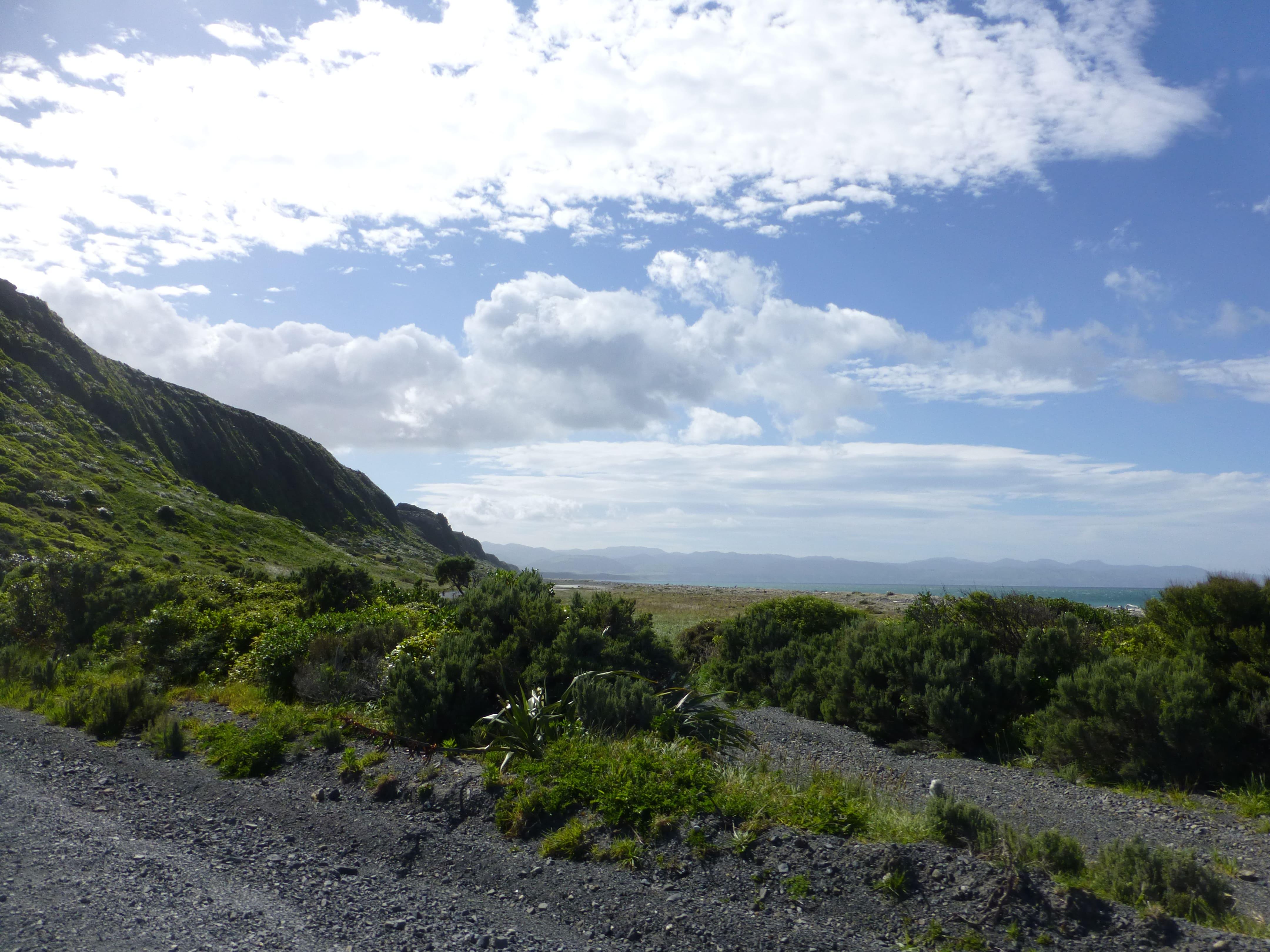 Weit-weg.reisen, Palliser Bay bei Corner Creek 5