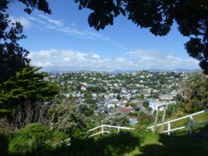 Blick über Wellington, Weit-weg.reisen, 3