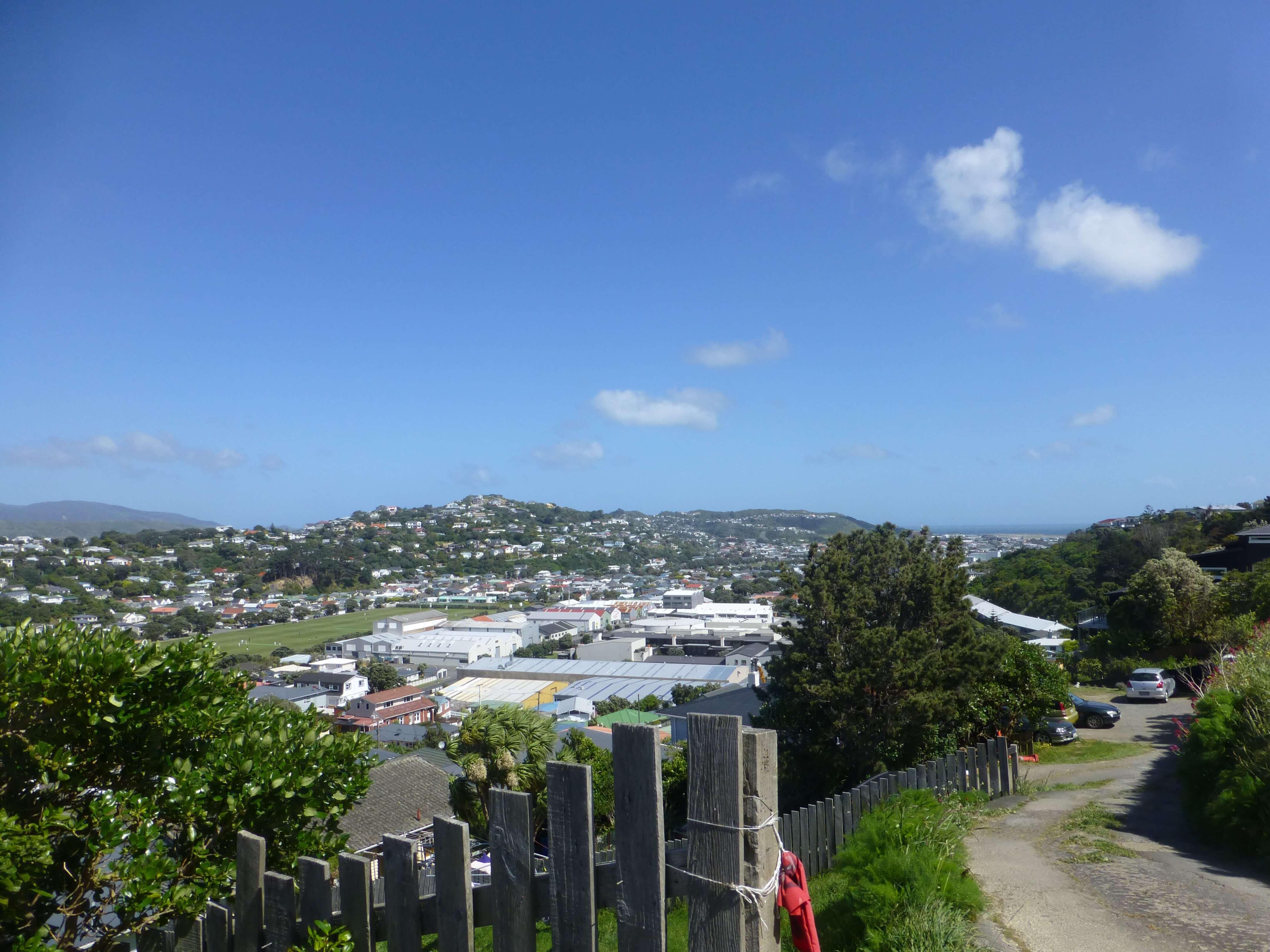 Blick über Wellington, Weit-weg.reisen 4
