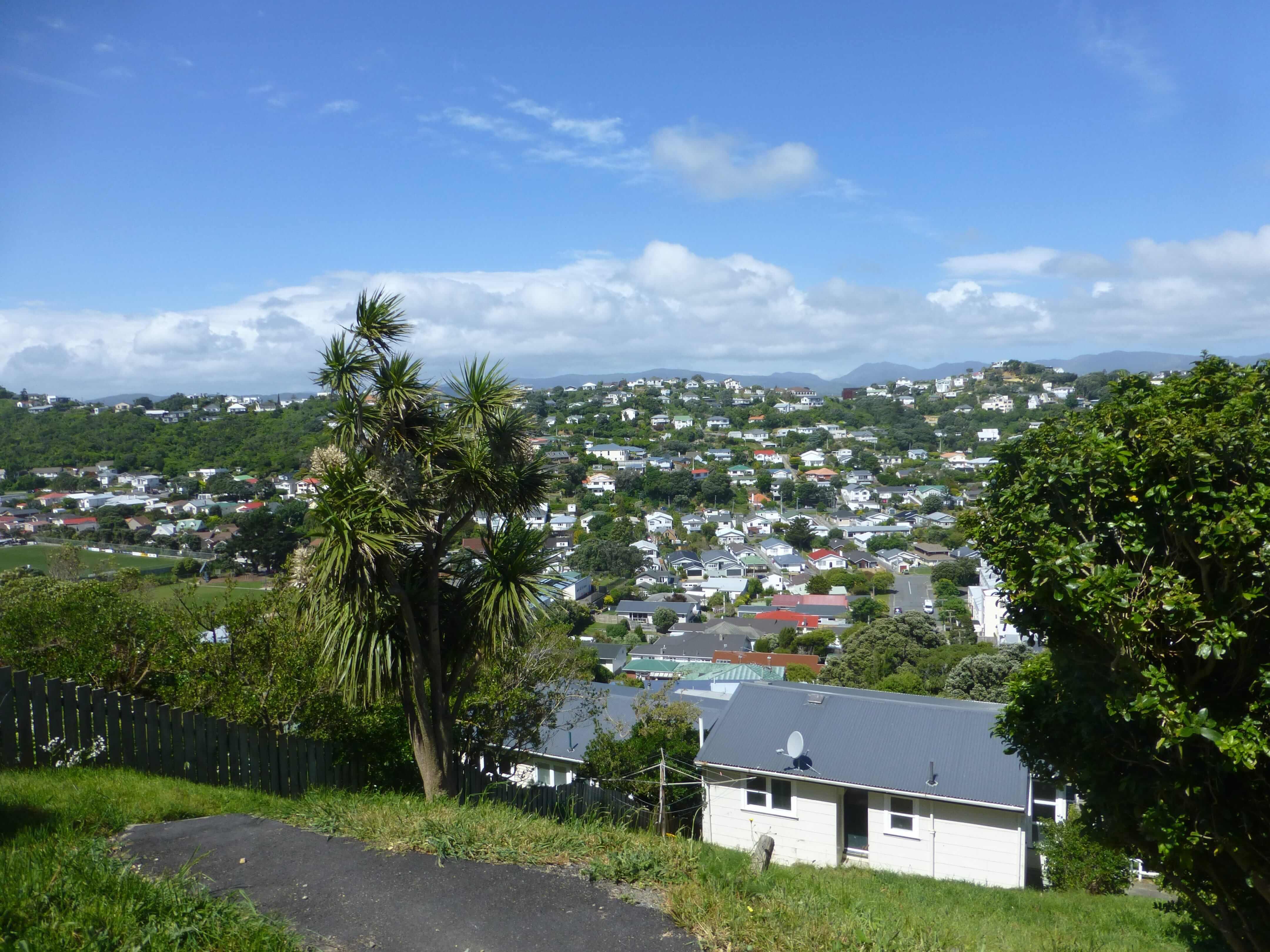 Blick über Wellington, Weit-weg.reisen 5