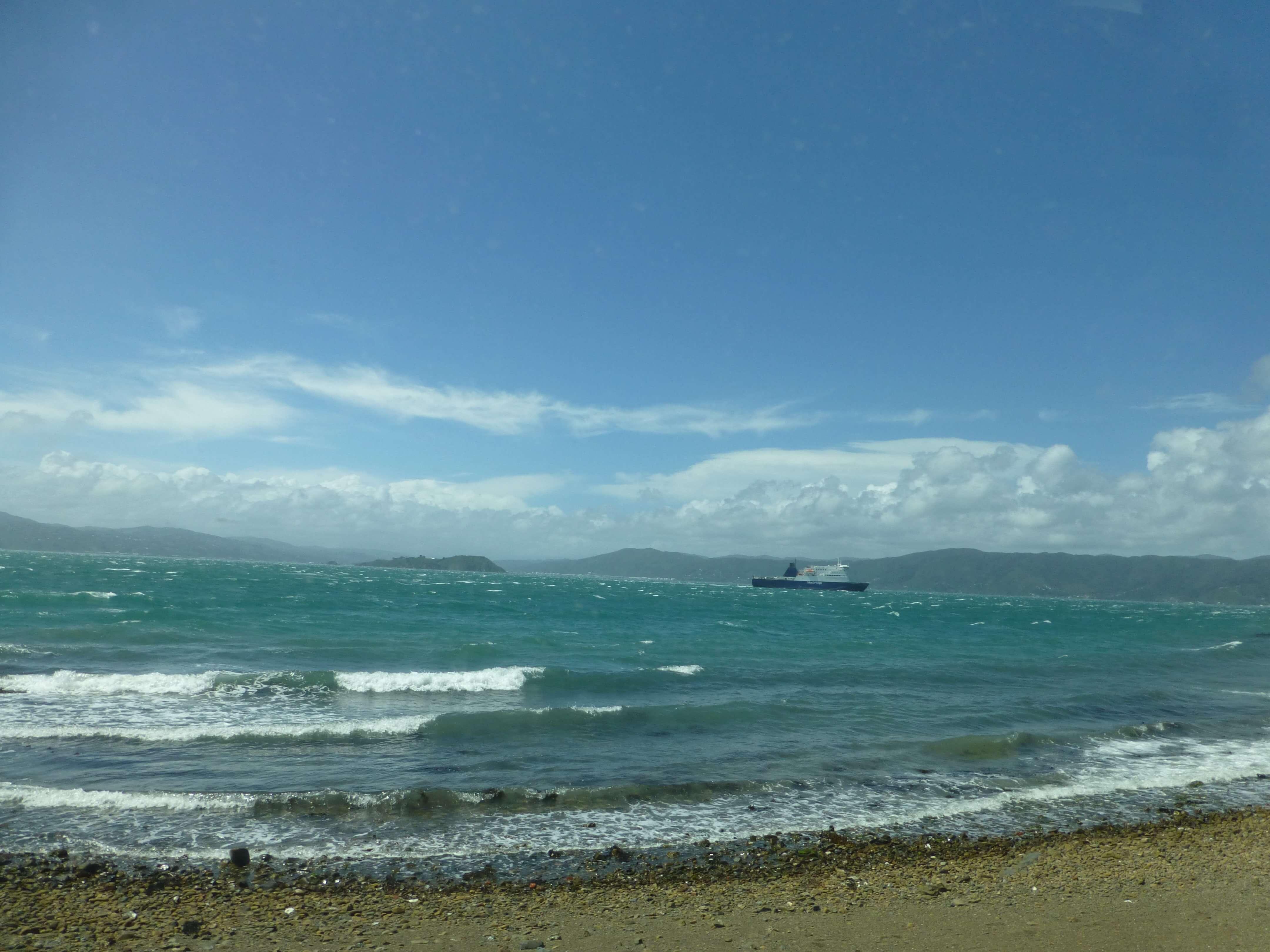 Wellington, Evans Bay, Weit-weg.reisen, 1