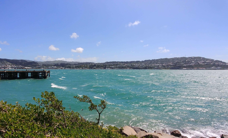 Wellington, Evans Bay, Weit-weg.reisen, 4