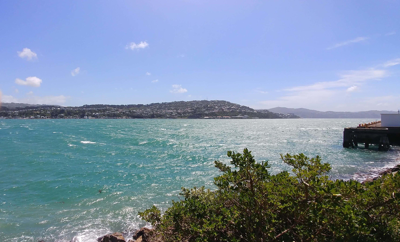 Wellington, Evans Bay, Weit-weg.reisen, 7
