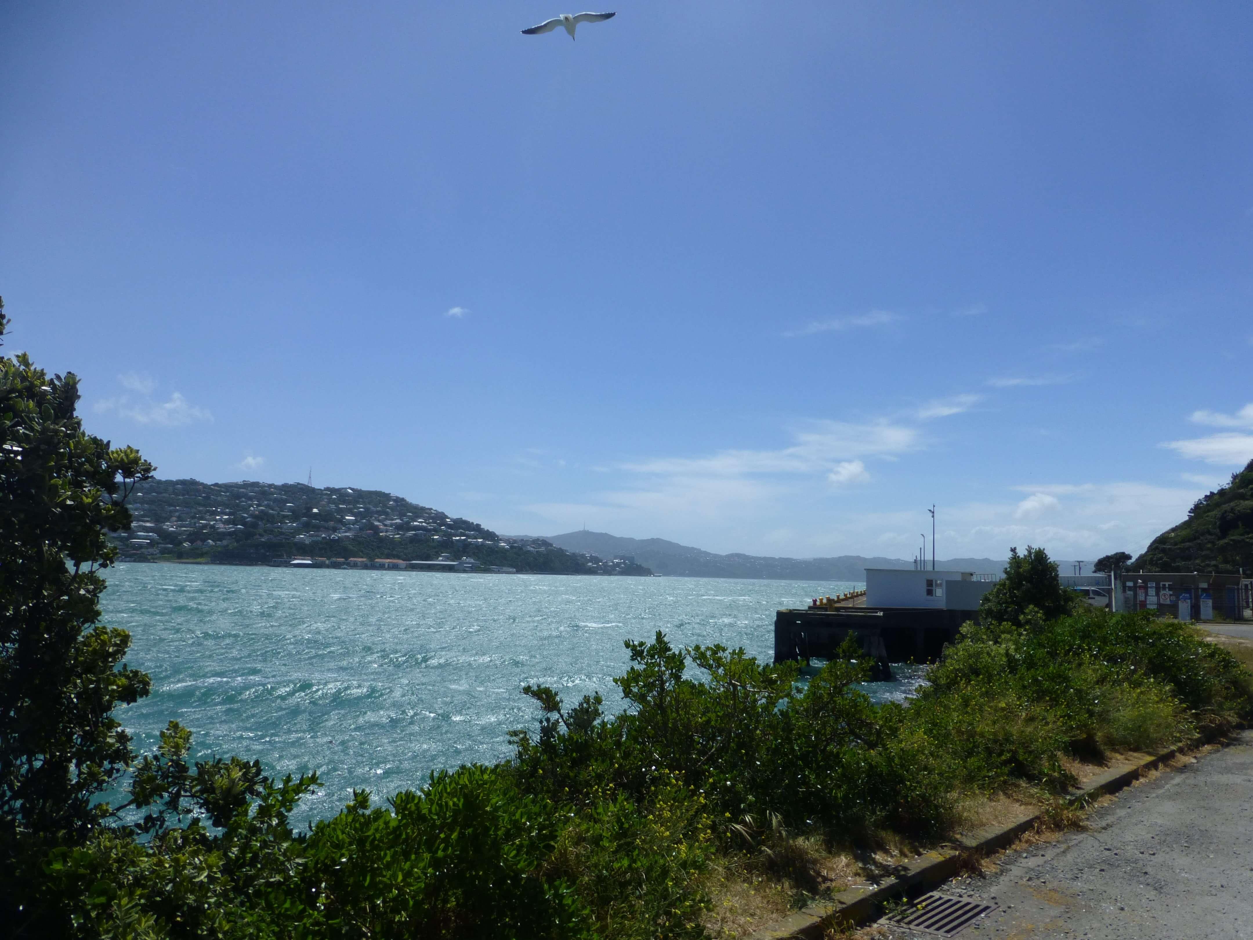 Wellington, Weit-weg.reisen, 4
