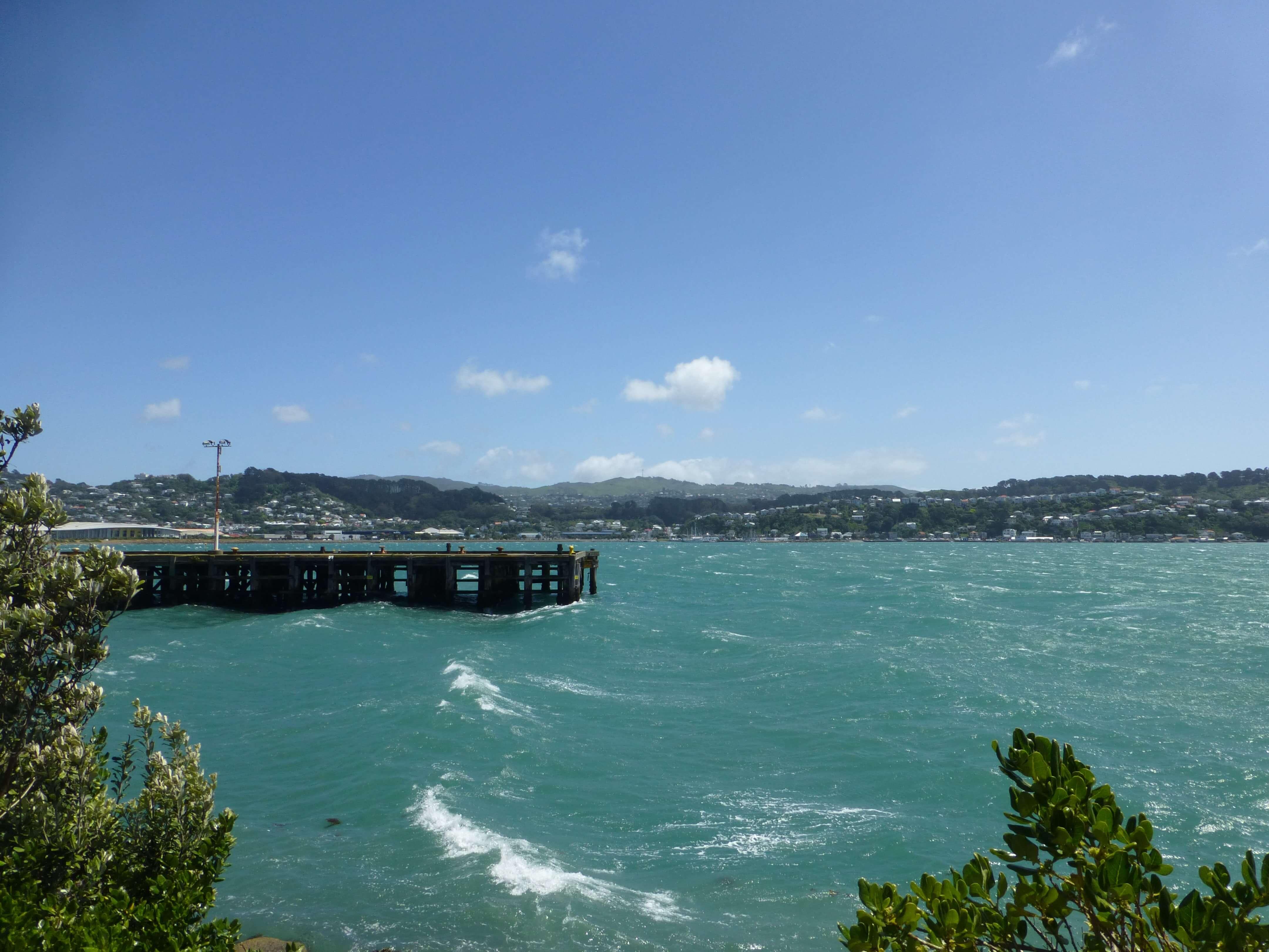 Wellington, Weit-weg.reisen, 5