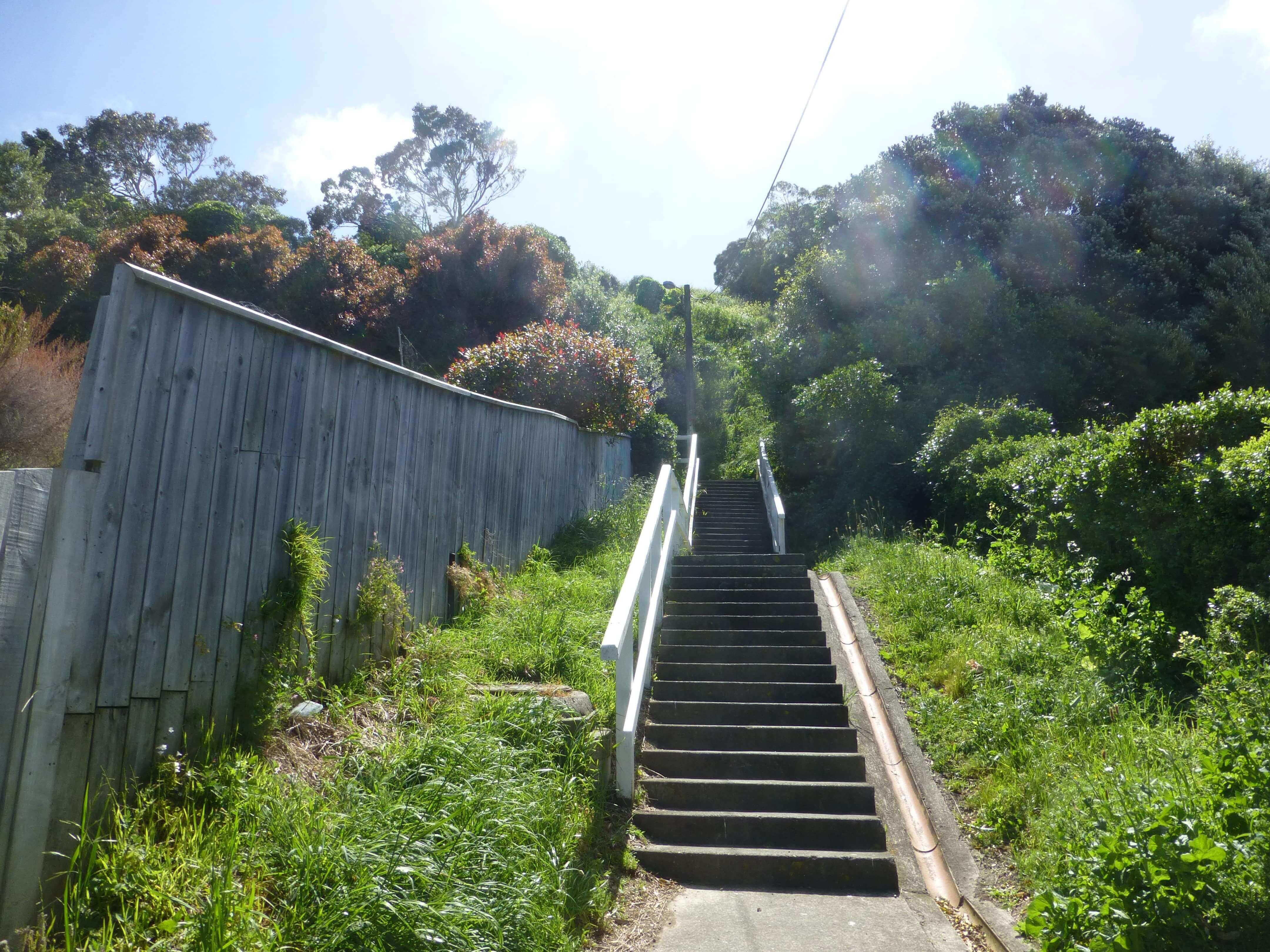 Wellington, in Miramar auf dem Weg zum Weta Shop, Weit-weg.reisen, 20
