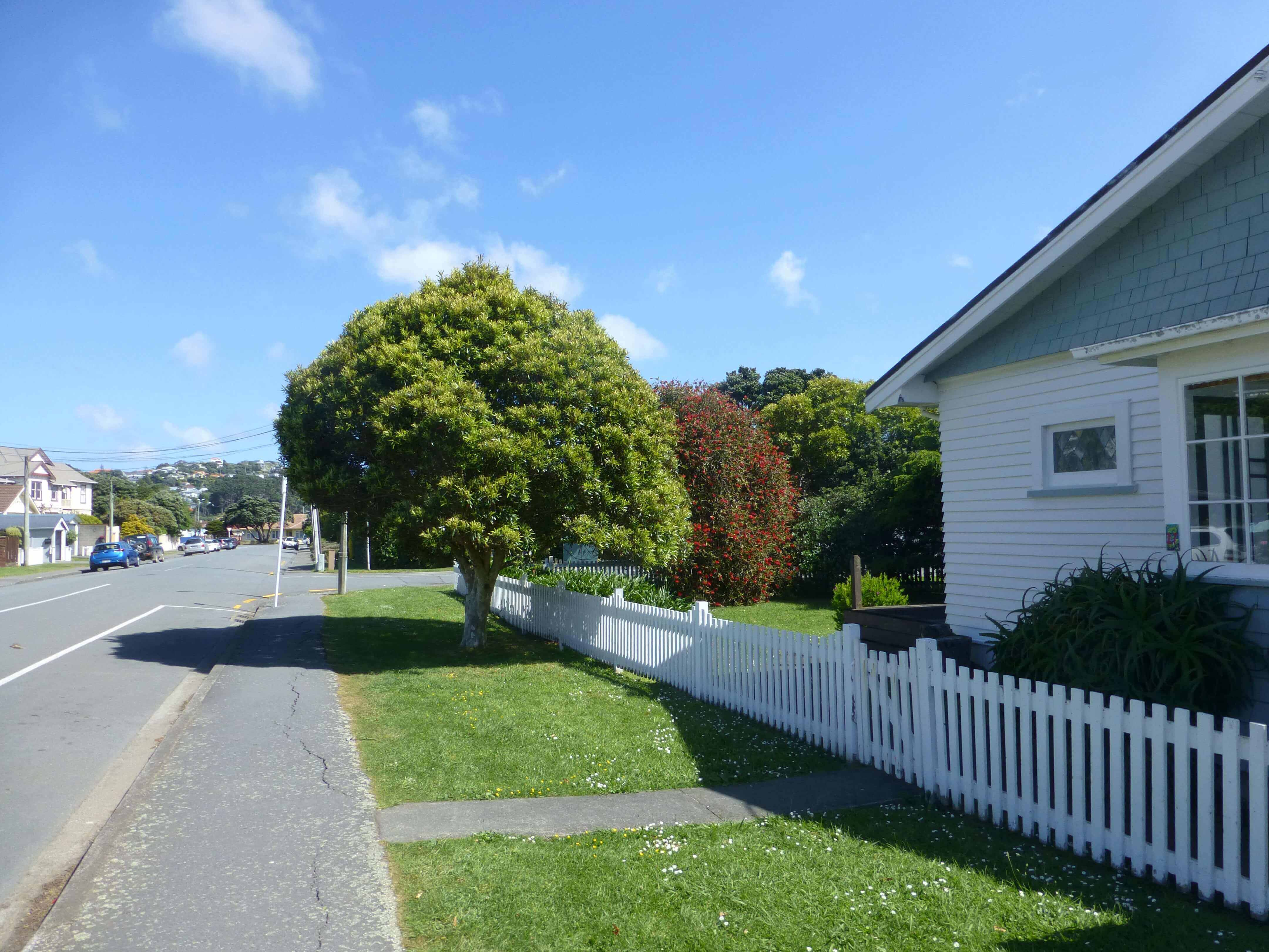 Wellington, in Miramar auf dem Weg zum Weta Shop, Weit-weg.reisen 10