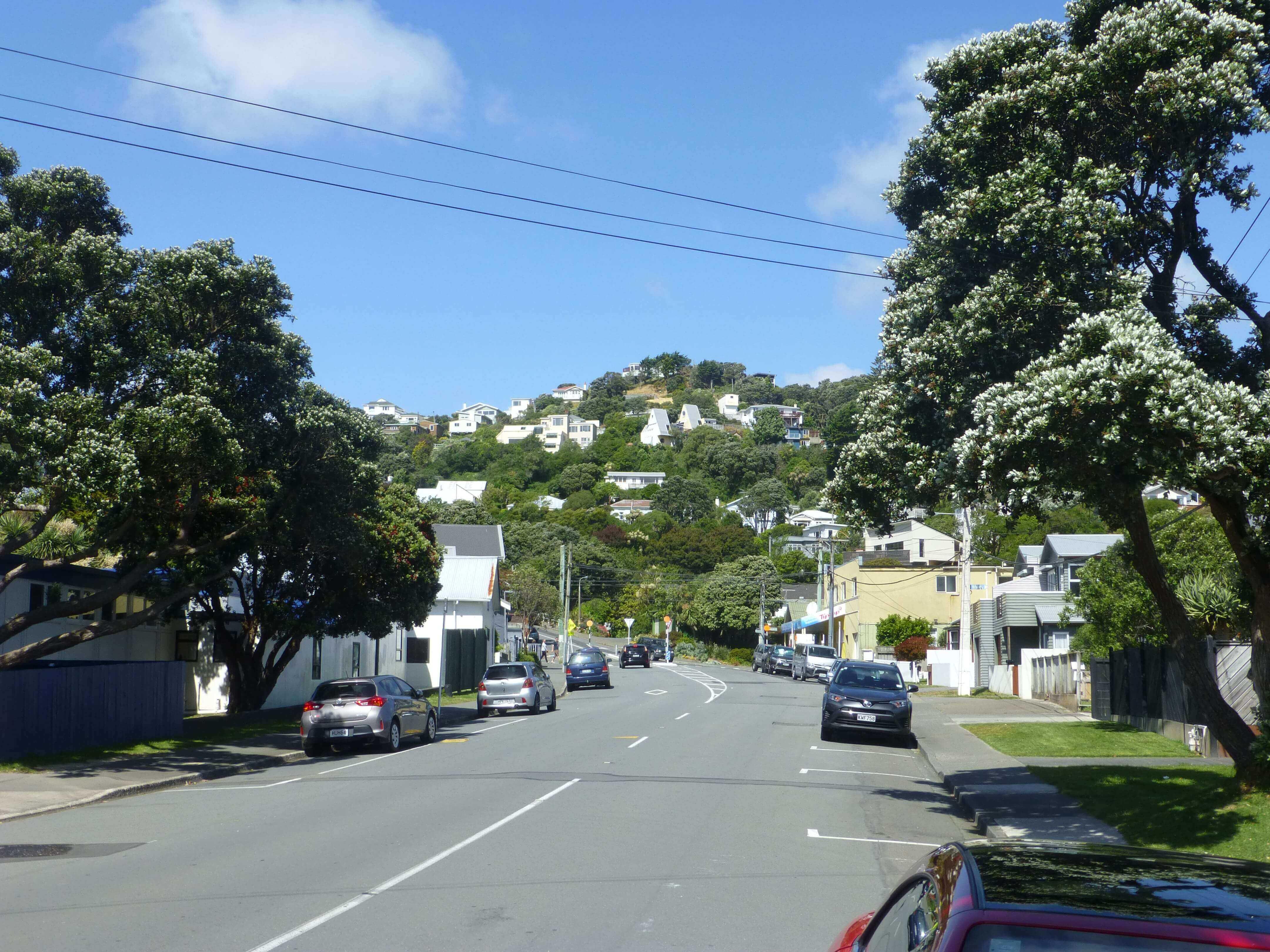 Wellington, vor dem Weta Shop, Weit-weg.reisen 11