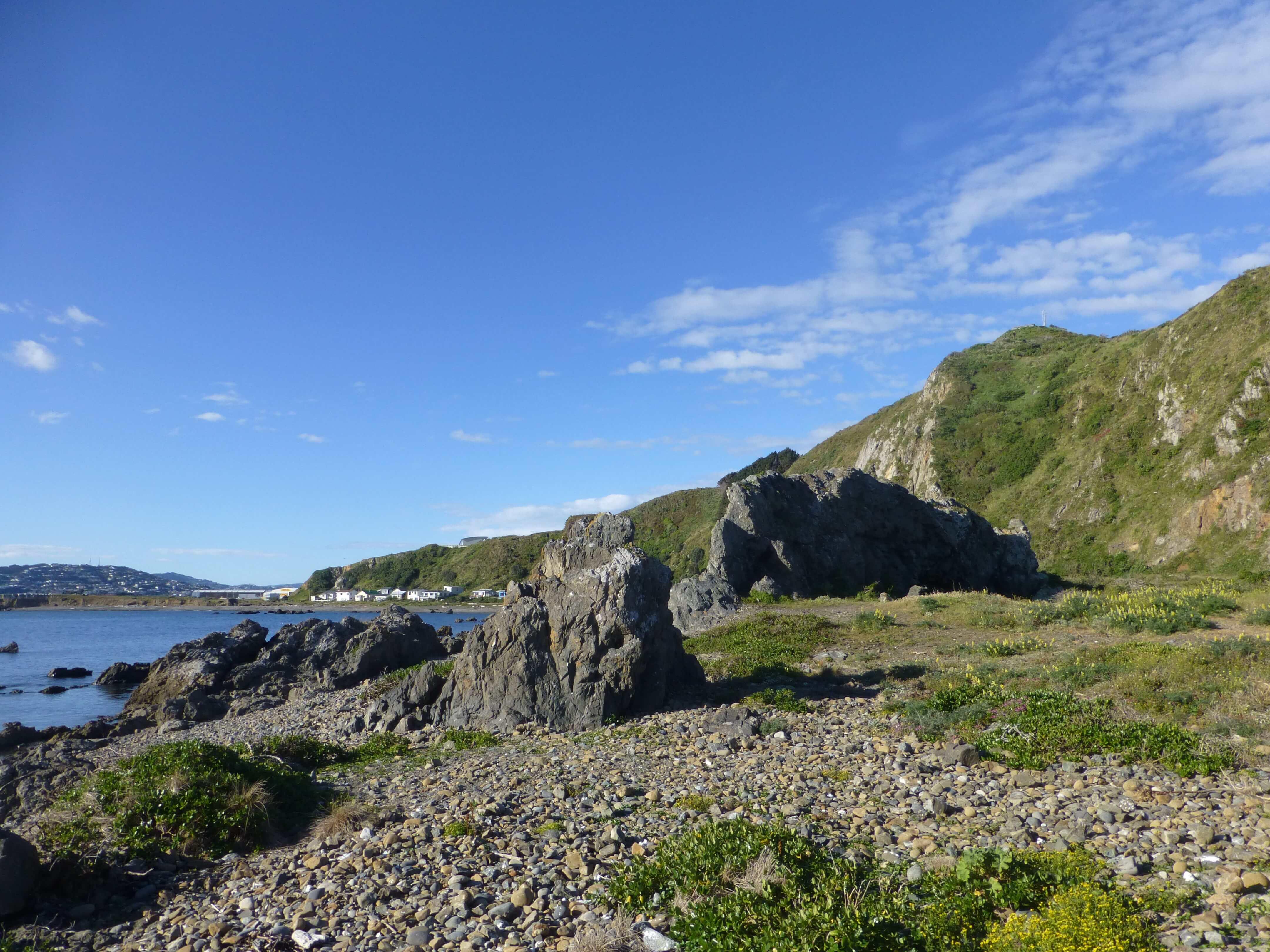 Wellington, Moa Point, Weit-weg.reisen 2